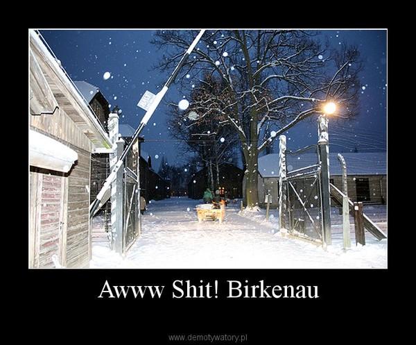 Awww Shit! Birkenau –
