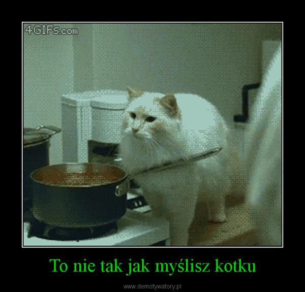 To nie tak jak myślisz kotku –