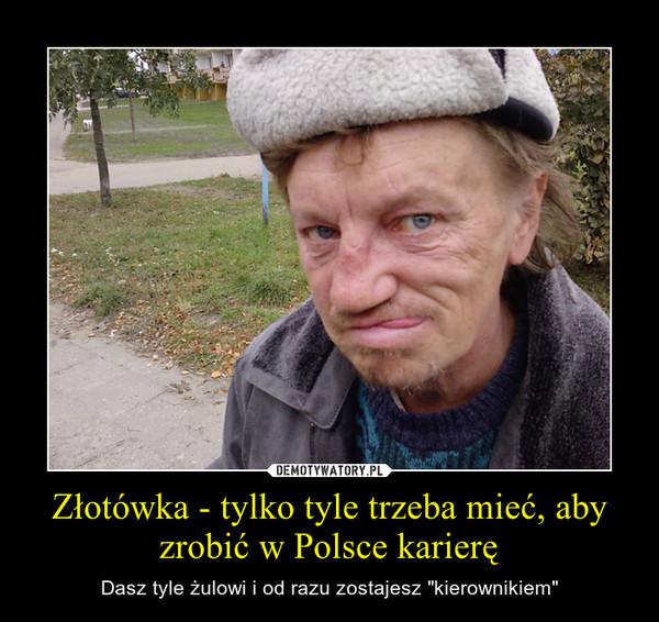 """Złotówka - tylko tyle trzeba mieć, aby zrobić w Polsce karierę – Dasz tyle żulowi i od razu zostajesz """"kierownikiem"""""""