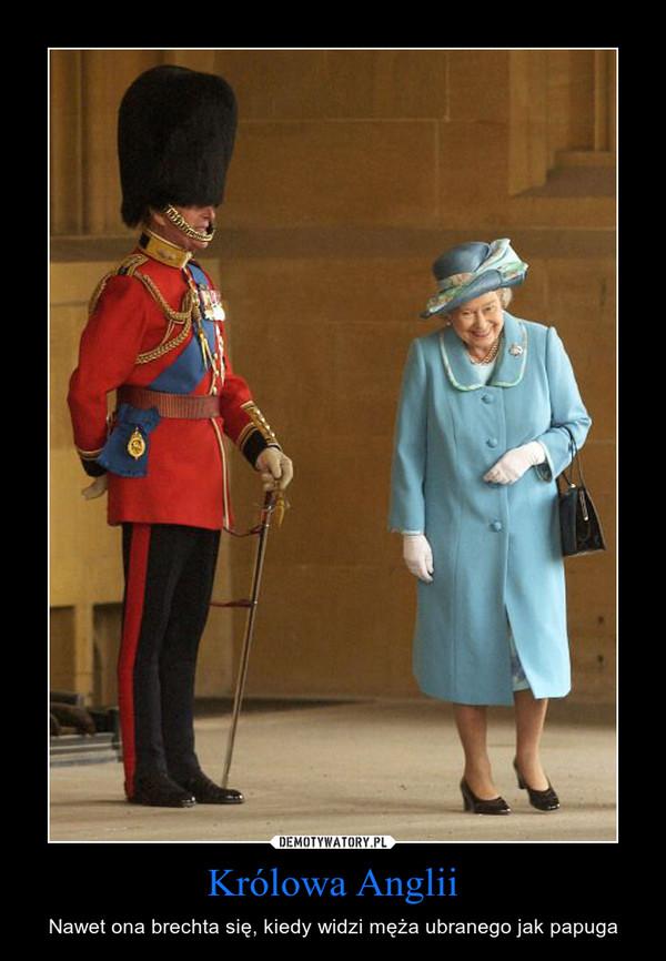 Królowa Anglii – Nawet ona brechta się, kiedy widzi męża ubranego jak papuga