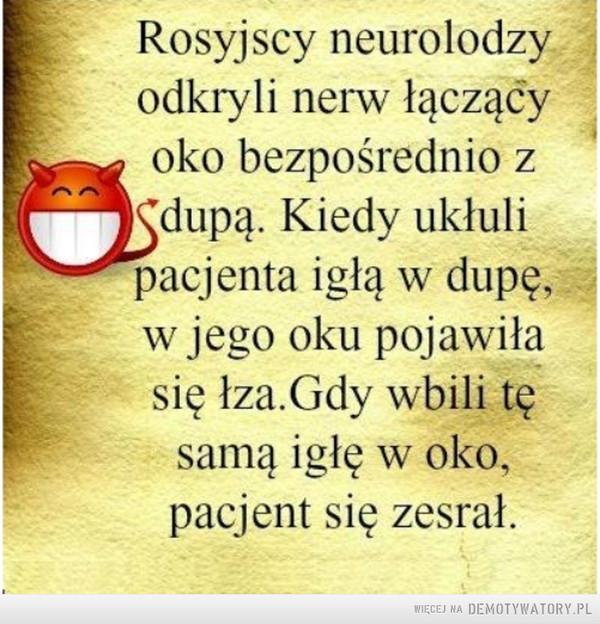 Rosyjscy neurolodzy –