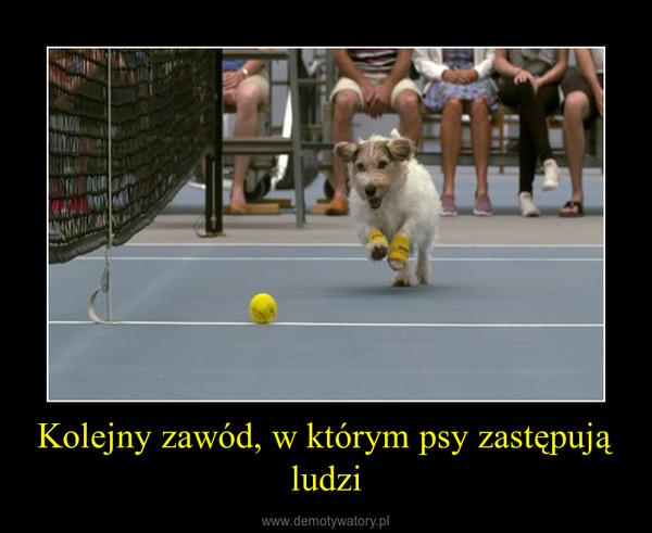 Kolejny zawód, w którym psy zastępują ludzi –