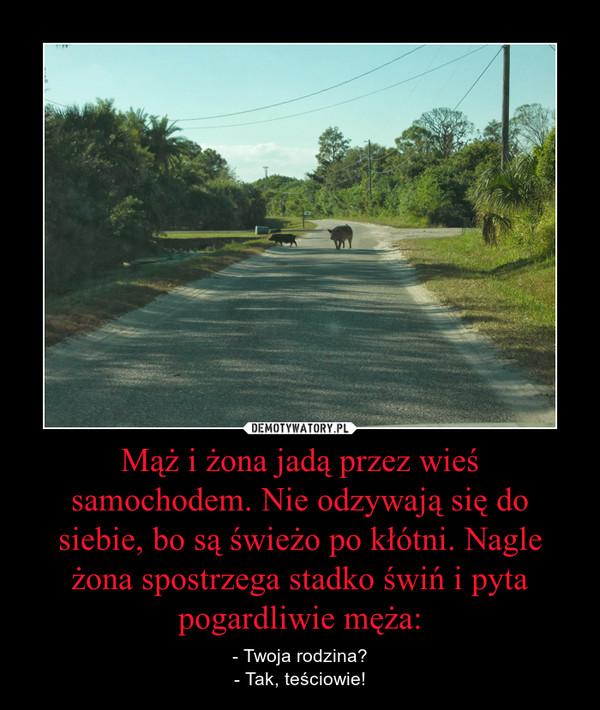 Mąż i żona jadą przez wieś samochodem. Nie odzywają się do siebie, bo są świeżo po kłótni. Nagle żona spostrzega stadko świń i pyta pogardliwie męża: – - Twoja rodzina?- Tak, teściowie!