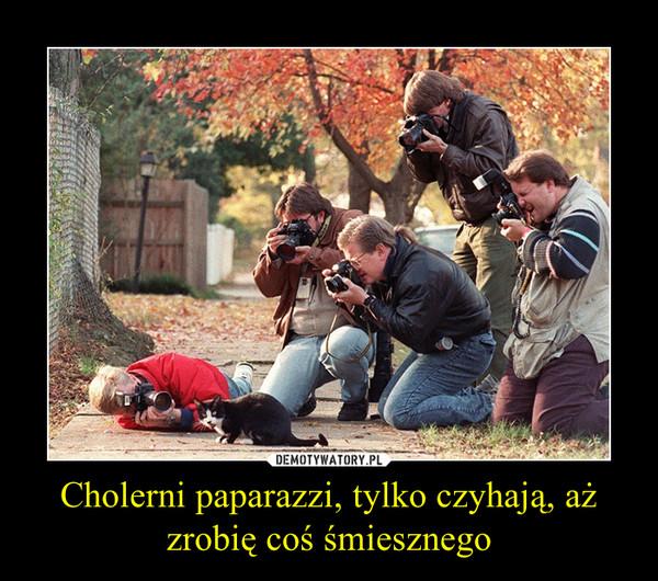 Cholerni paparazzi, tylko czyhają, aż zrobię coś śmiesznego –