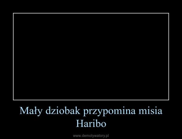 Mały dziobak przypomina misia Haribo –