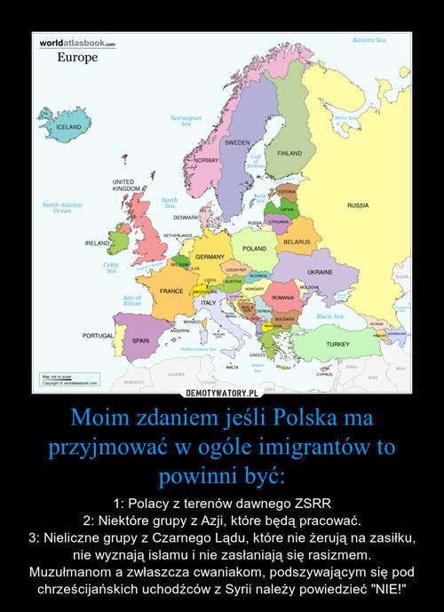 Moim zdaniem jeśli Polska ma przyjmować w ogóle imigrantów to powinni być:
