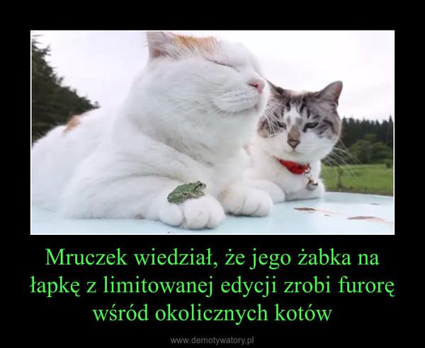 Mruczek wiedział, że jego żabka na łapkę z limitowanej edycji zrobi furorę wśród okolicznych kotów –