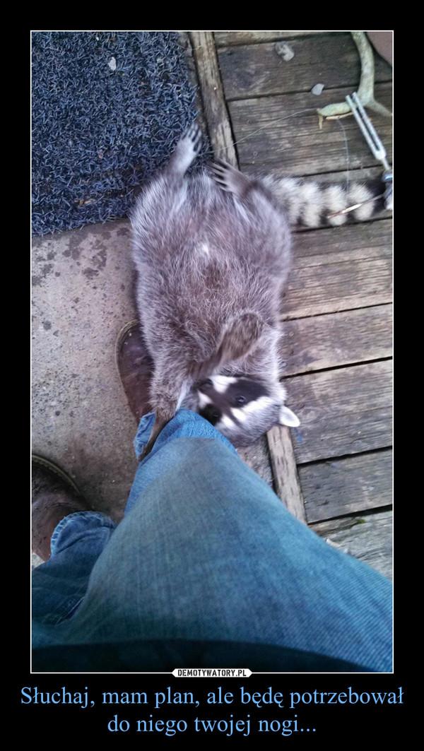 Słuchaj, mam plan, ale będę potrzebował do niego twojej nogi... –