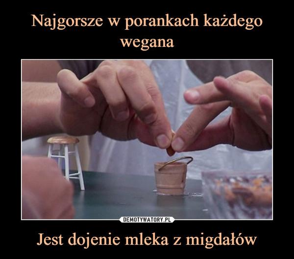 Jest dojenie mleka z migdałów –