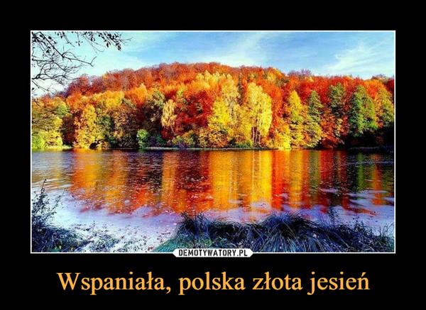 Wspaniała, polska złota jesień –