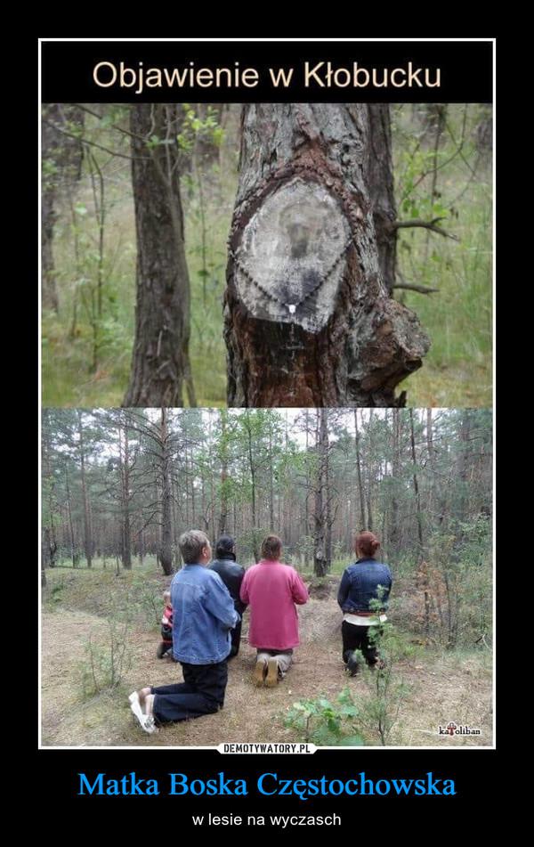 Matka Boska Częstochowska – w lesie na wyczasch