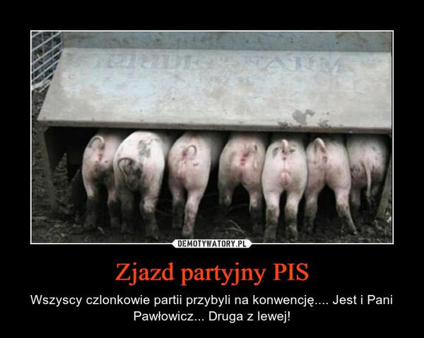 Zjazd partyjny PIS – Wszyscy czlonkowie partii przybyli na konwencję.... Jest i Pani Pawłowicz... Druga z lewej!