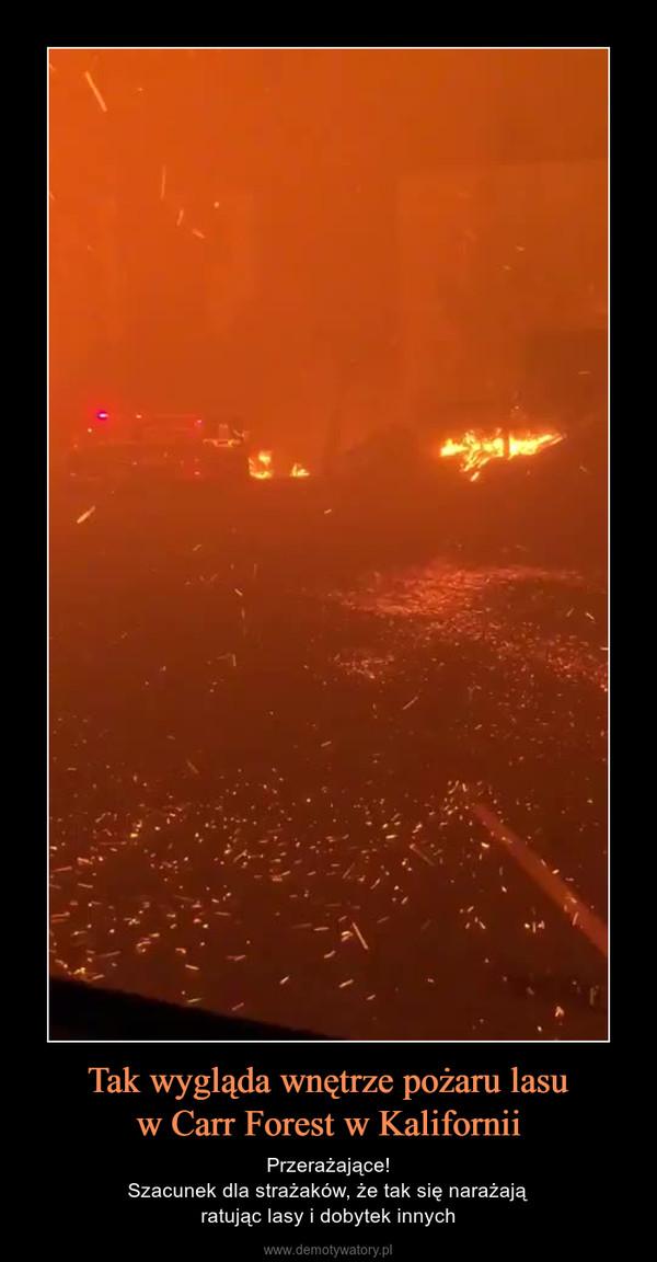 Tak wygląda wnętrze pożaru lasuw Carr Forest w Kalifornii – Przerażające!Szacunek dla strażaków, że tak się narażająratując lasy i dobytek innych
