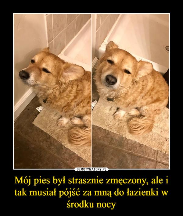 Mój pies był strasznie zmęczony, ale i tak musiał pójść za mną do łazienki w środku nocy –