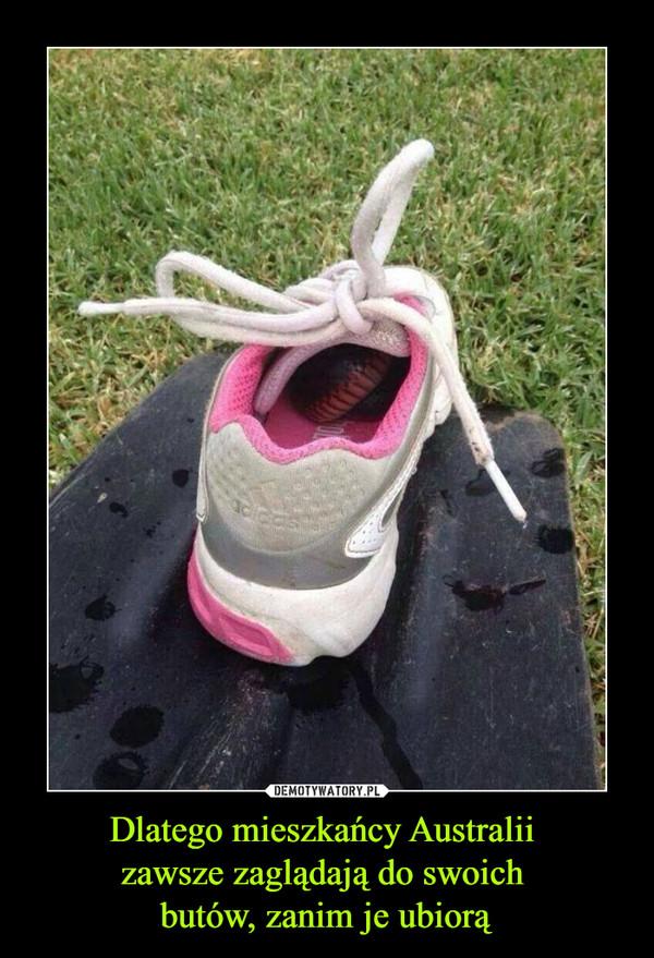 Dlatego mieszkańcy Australii zawsze zaglądają do swoich butów, zanim je ubiorą –