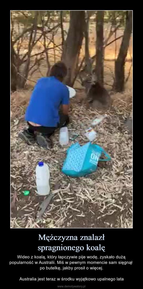 Mężczyzna znalazłspragnionego koalę – Wideo z koalą, który łapczywie pije wodę, zyskało dużą popularność w Australii. Miś w pewnym momencie sam sięgnął po butelkę, jakby prosił o więcej.Australia jest teraz w środku wyjątkowo upalnego lata