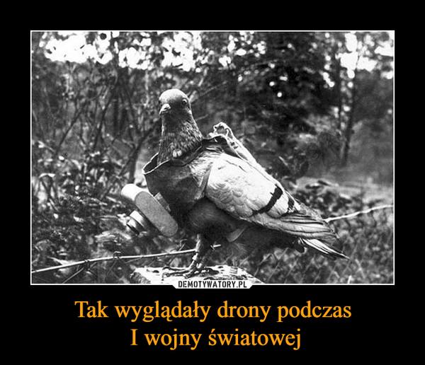 Tak wyglądały drony podczas I wojny światowej –