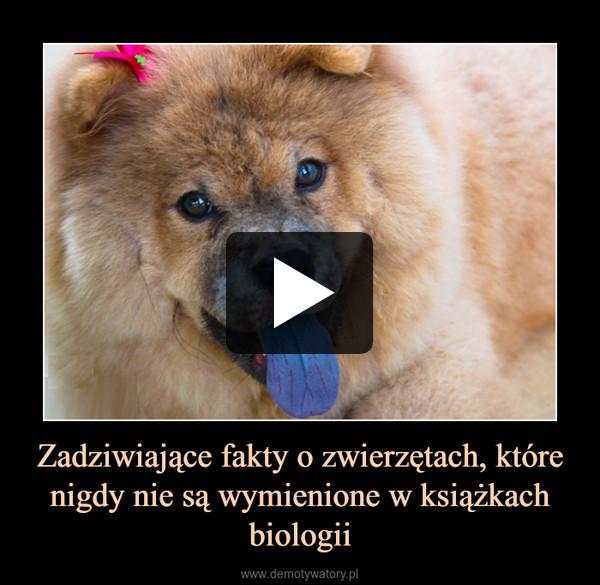 Zadziwiające fakty o zwierzętach, które nigdy nie są wymienione w książkach biologii –