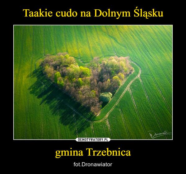 gmina Trzebnica – fot.Dronawiator