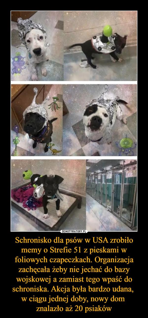 Schronisko dla psów w USA zrobiło memy o Strefie 51 z pieskami w foliowych czapeczkach. Organizacja zachęcała żeby nie jechać do bazy wojskowej a zamiast tego wpaść do schroniska. Akcja była bardzo udana, w ciągu jednej doby, nowy dom znalazło aż 20 psiaków –