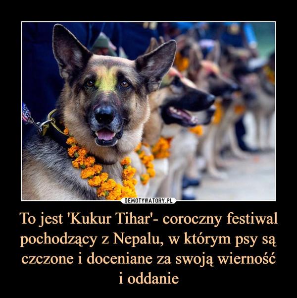 To jest 'Kukur Tihar'- coroczny festiwal pochodzący z Nepalu, w którym psy są czczone i doceniane za swoją wiernośći oddanie –