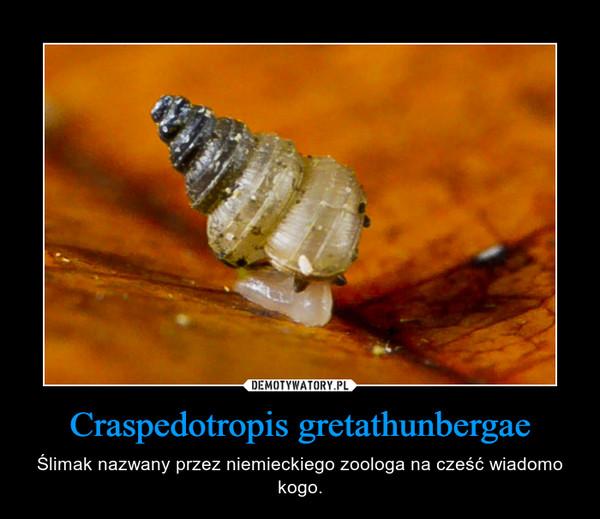 Craspedotropis gretathunbergae – Ślimak nazwany przez niemieckiego zoologa na cześć wiadomo kogo.