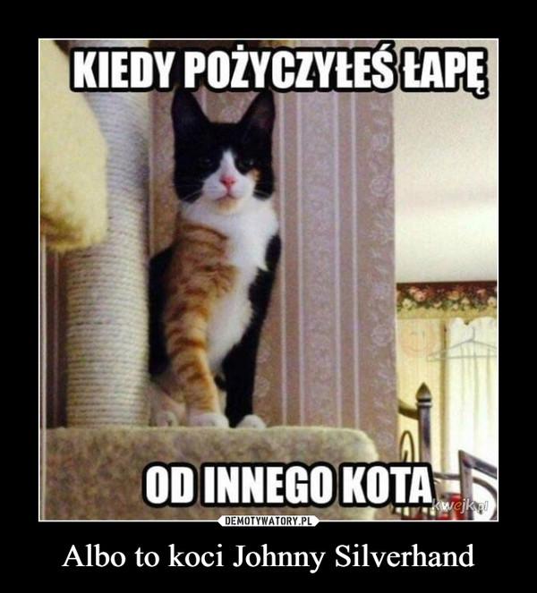 Albo to koci Johnny Silverhand –  Kiedy pożyczyłeś łapę od innego kota