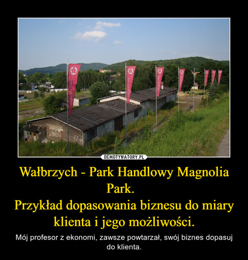 Wałbrzych - Park Handlowy Magnolia Park.   Przykład dopasowania biznesu do miary klienta i jego możliwości.