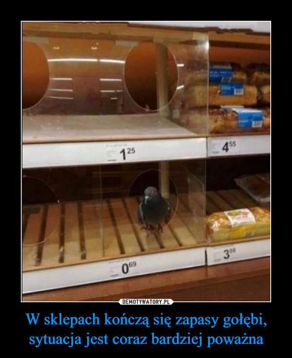 W sklepach kończą się zapasy gołębi, sytuacja jest coraz bardziej poważna –