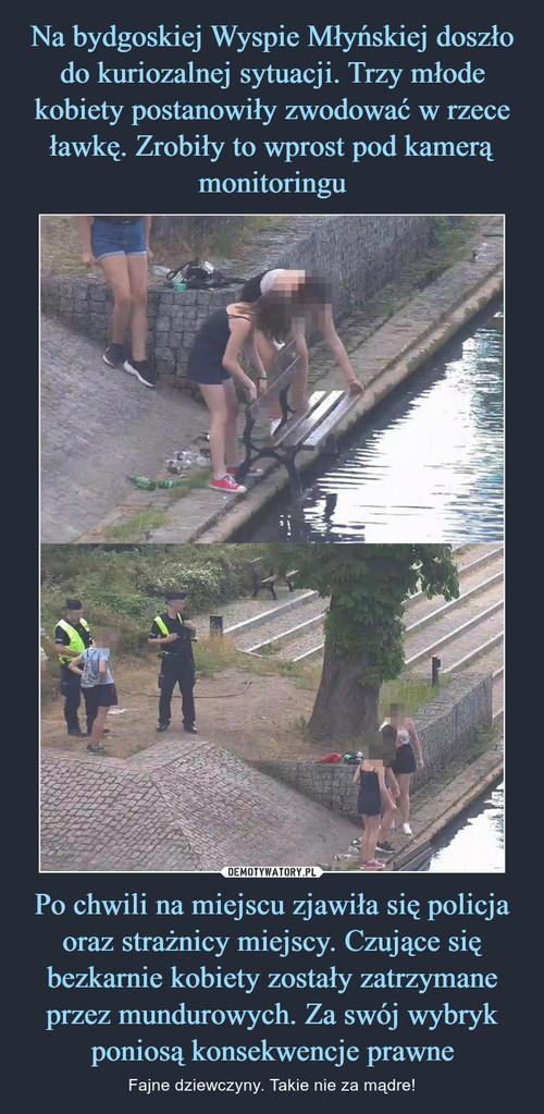 Na bydgoskiej Wyspie Młyńskiej doszło do kuriozalnej sytuacji. Trzy młode kobiety postanowiły zwodować w rzece ławkę. Zrobiły to wprost pod kamerą monitoringu Po chwili na miejscu zjawiła się policja oraz strażnicy miejscy. Czujące się bezkarnie kobiety zostały zatrzymane przez mundurowych. Za swój wybryk poniosą konsekwencje prawne